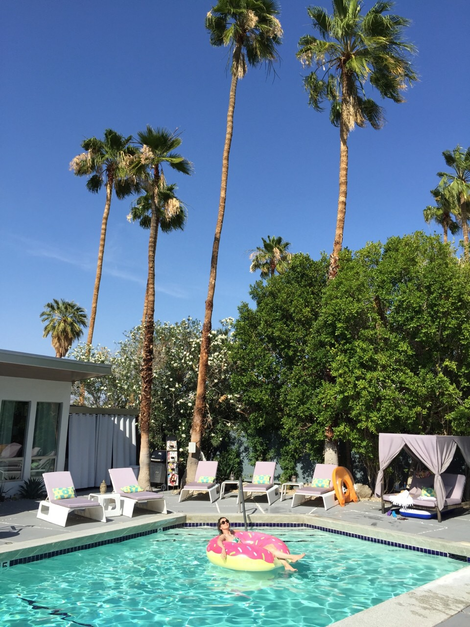 The Wesley Boutique Hotel In Palm Springs This Life Of Travel - A mid century desert oasis in palm springs