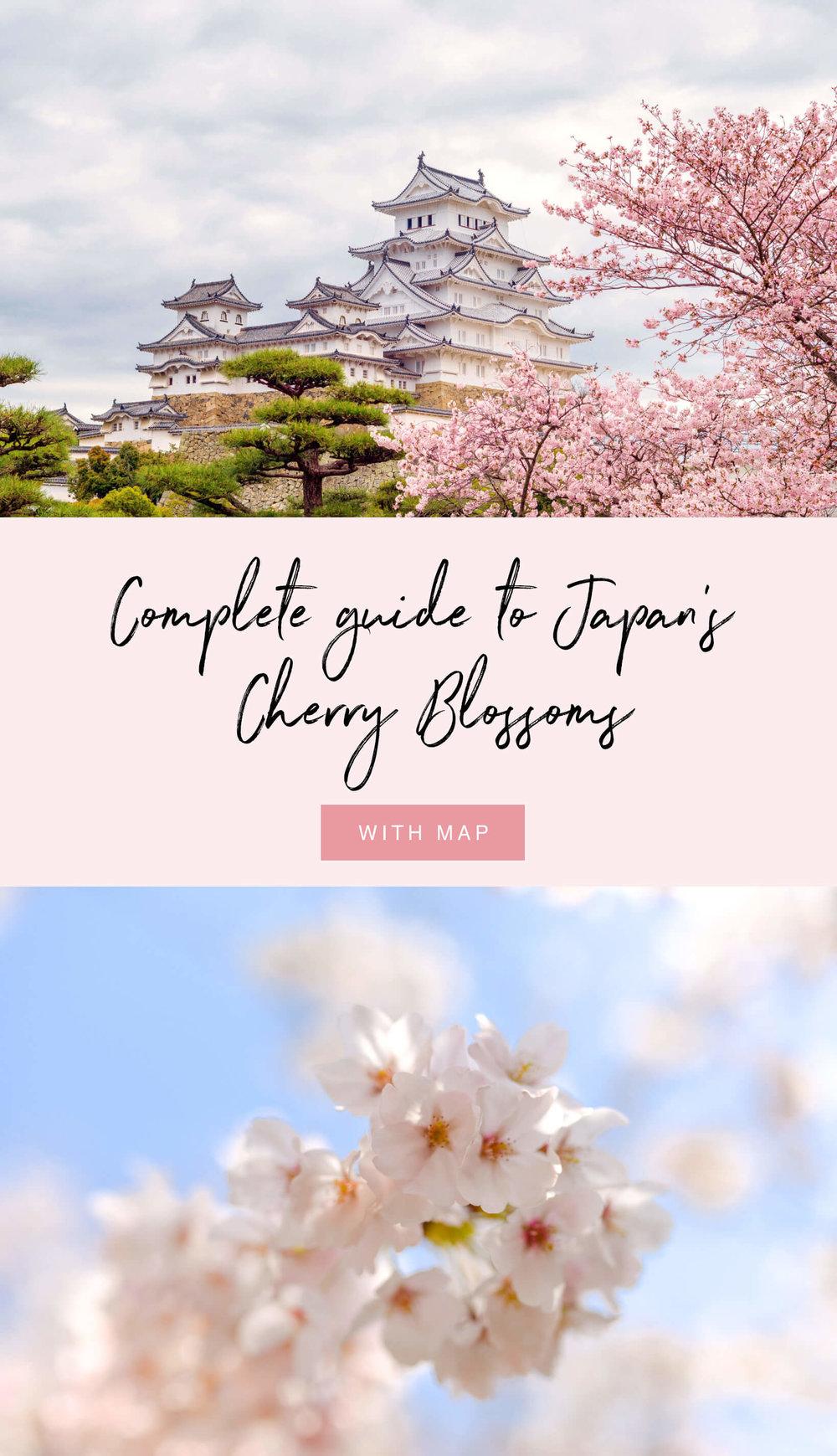 CompleteGuideToJapansCherryBlossomsWithMap.jpg