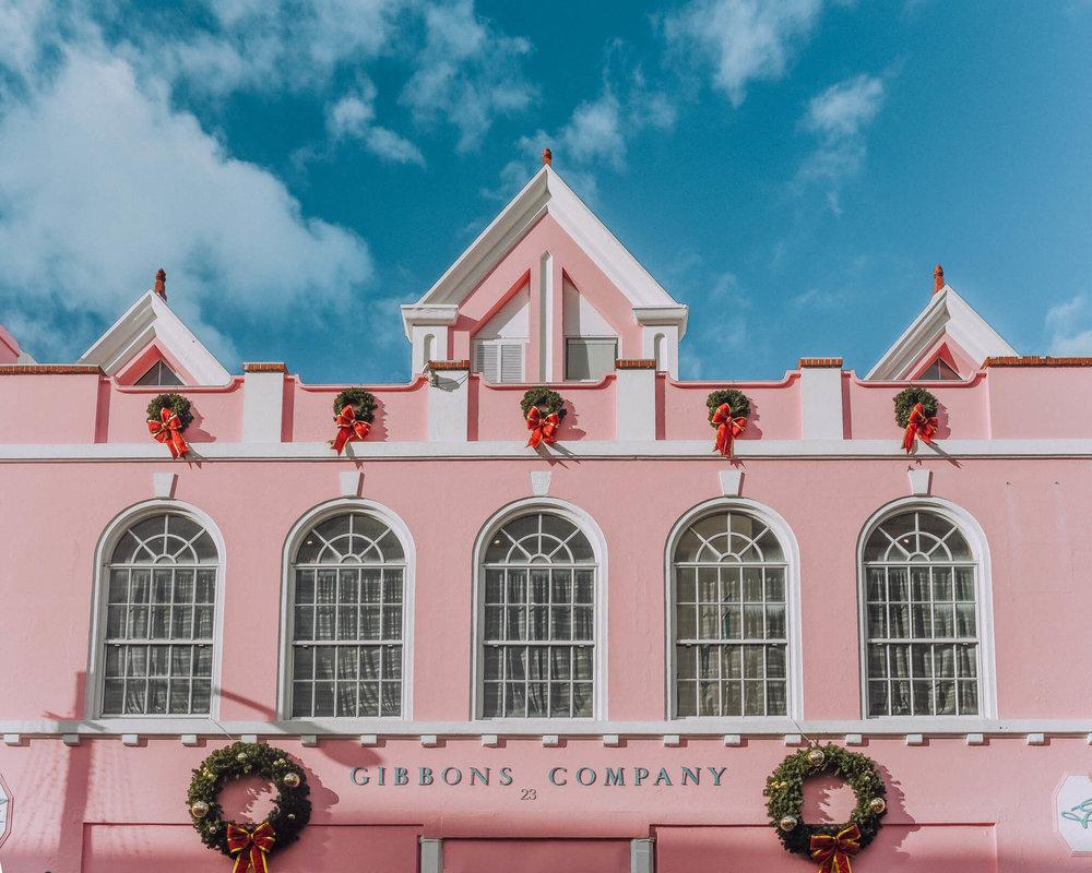 PinkBermuda.jpg