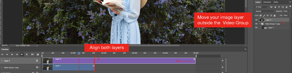 Purple timeline is your screen grab. Blue timeline is your video. Make sure both timelines are the same length.