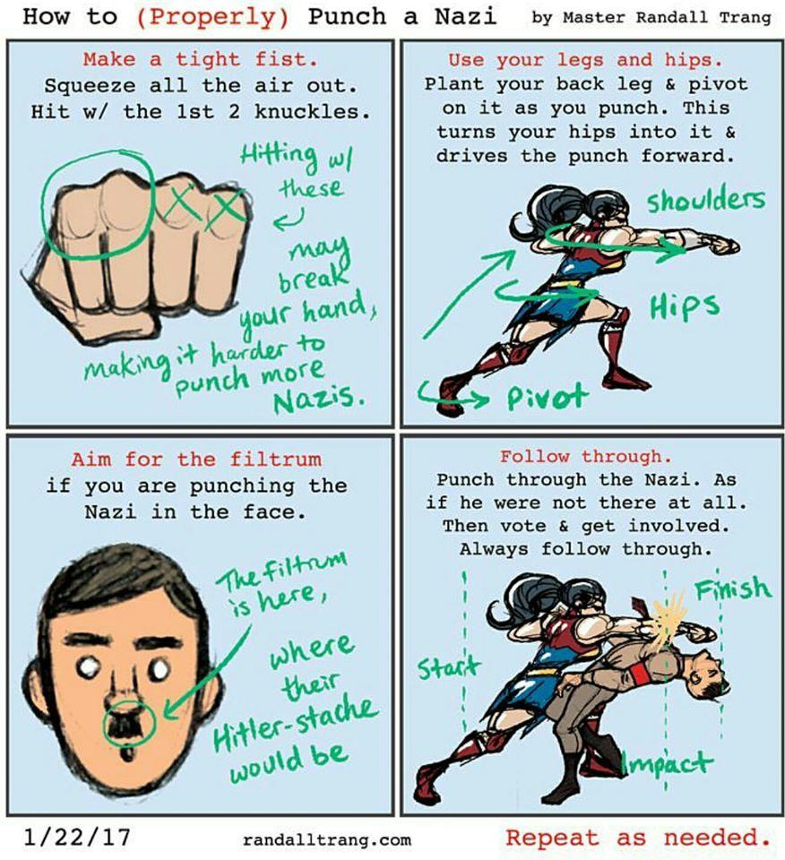 Meme DC nazi punch.jpg