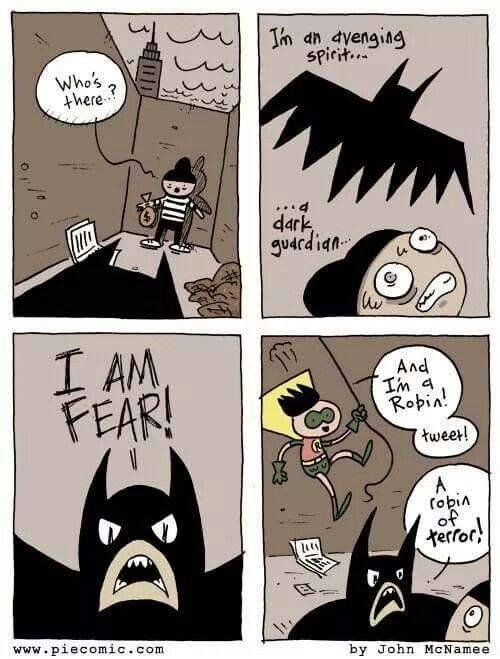 meme dc robin of terror.jpg
