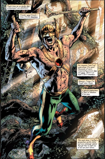 Hawkman 3-6.jpg