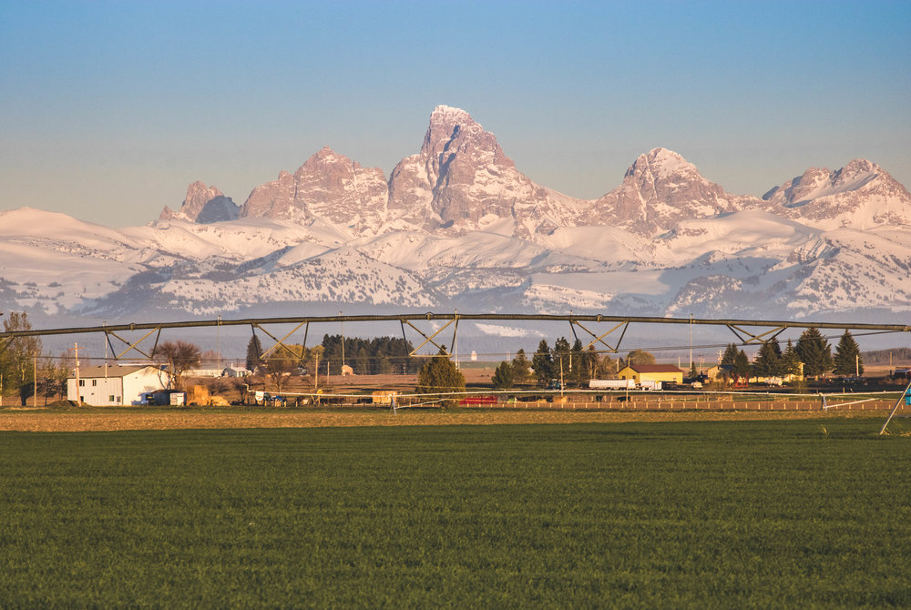 tetons-close (1 of 1).jpg