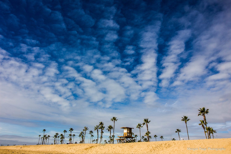 California Beaches Explored Co