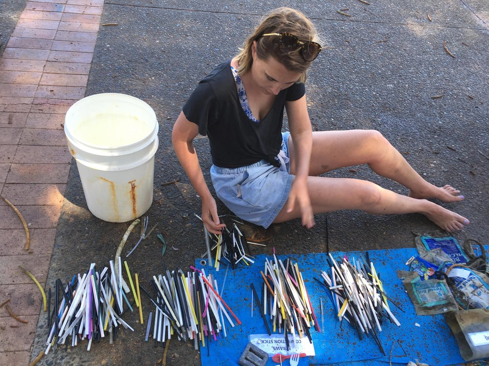 452 straws were collected at Manly Cove on 19 November 2017