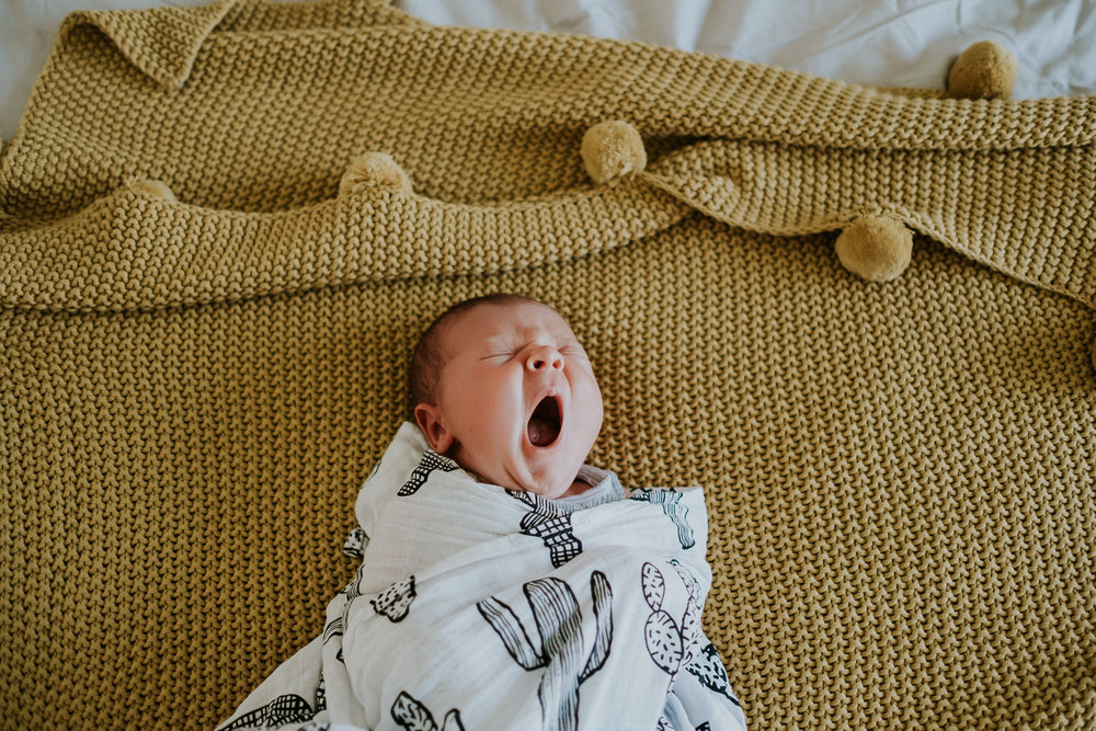 Melbourne Newborn Photography (26 of 42).jpg