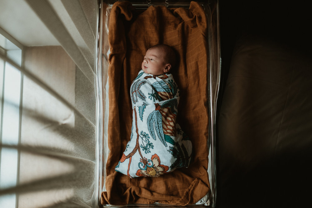 Melbourne Newborn Photos (20 of 20).jpg