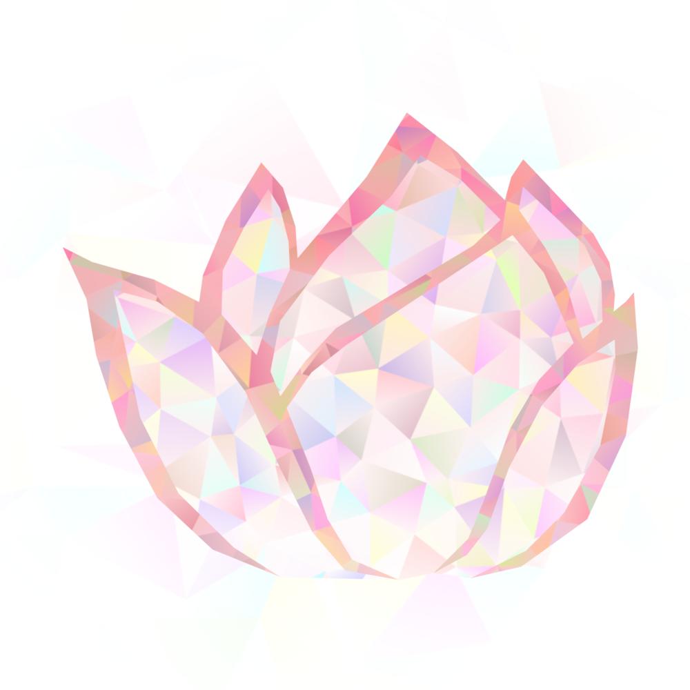poly lotus 4.1 r.png