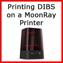 MoonRay Instructions.jpg