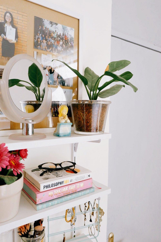Little Tips on Houseplants - Pilih tanaman yang benar-benar gampang adaptasi dan minim maintenance. Apalagi yang nggak mau ribet karena ceroboh dan jarang berada di rumah. Rekomendasi saya adalah sirih gading, lidah mertua, sri rejeki, serta tanaman-tanaman jenis palem dan kaktus.Ruangan harus memiliki sirkulasi udara yang baik. It's always a good thing for any houseplants—untuk yang berkemampuan menyerap udara panas, lembap, atau beracun sekalipun.Ketahui detail lingkungan yang cocok untuk tanaman. Misalnya, suhu minimal dan maksimal, paparan cahaya, kelembapan udara, dan lainnya. Karena nggak semua tanaman indoor cocok di ruangan tertentu, misalnya ruangan ber-AC atau ruangan yang tertutup.Jangan asal pilih pot. I learnt this the hard way for my dragon tree. Jangan karena lihat pot yang menggemaskan, lalu jadi impulsif beli dan ganti pot tanpa cari tahu soal pot yang sesuai untuk tanaman tertentu (kayak saya).Cek kadar toksin tanaman. Penting, nih, buat yang punya hewan peliharaan di rumah, terutama anjing dan kucing yang suka usil gigitin tanaman. Karena ada tanaman-tanaman indoor yang beracun that are very dangerous for our four-legged buddies.Jangan abaikan daun mati. Daun atau bagian tanaman yang mati dapat menghambat pertumbuhan tanaman. Jadi jangan dicuekin, ya. Langsung dipotong atau dicabut!Selalu research sebelum membeli tanaman. Ketahui soal perawatan dasarnya, seperti cara menyiram, frekuensi menyiram, permasalahan umumnya, dan lain-lain. Selain itu pastikan juga kalau kita sebagai pemilik memang mampu dan berkomitmen merawatnya.