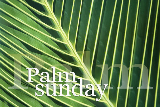 palm sunday image.jpg