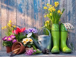 gardening day.jpg