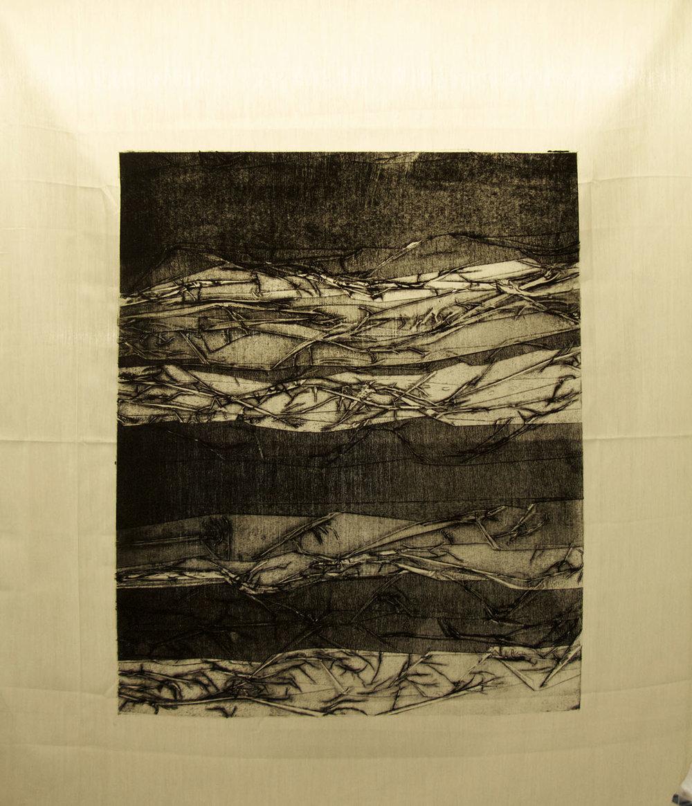 fabric print 1.jpg