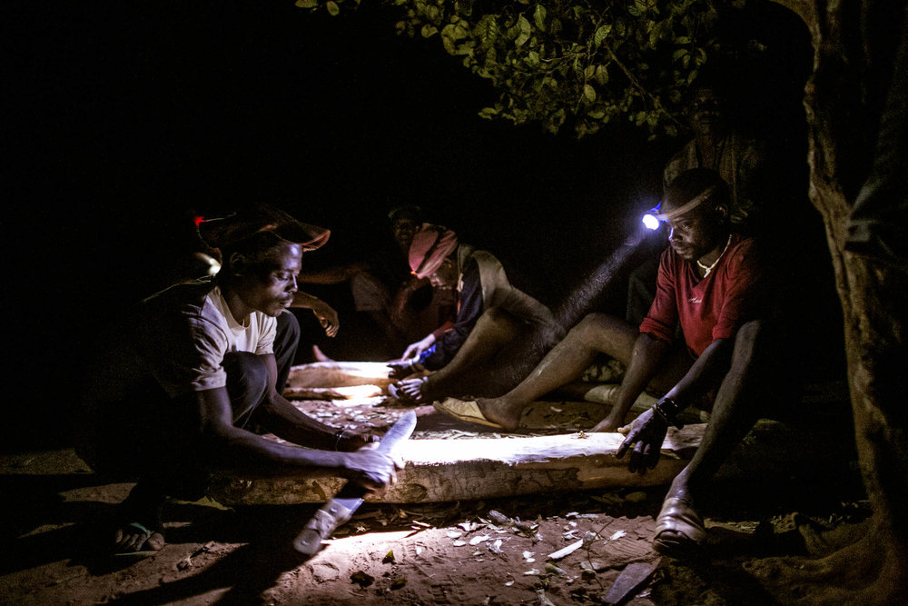 Alpha,  Joseph, Ibrahim and their friends begin the initial stages of stripping the outer layer of bark in order to make the traditional hunting attire. (Pete Muller/Prime for National Geographic)