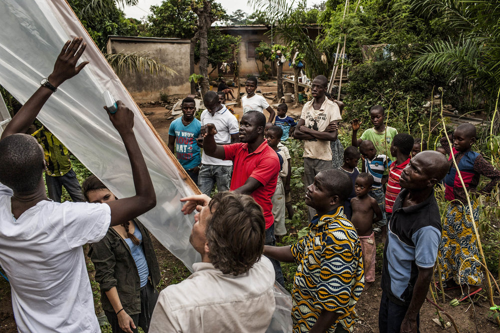 Dr. Fabian Leendertz (center foreground), Kouadio Leonce (left)  Krou Hermann Assemien (center in red shirt), Dede Yapo Desire (right center foreground) and Diambra Yapo Innocent (far right foreground) construct the bat-trapping apparatus in the village of Attienkru, outside Bouake, Ivory Coast on Wednesday, November 12, 2014. Dr. Leendertz is currently collecting samples from insect bats in his search for the elusive reservoir host of the Ebola virus. Scientists have been looking for the host for 38 years. At present, three species of fruit bats have emerged as suspected hosts but thus far no one has been able to extract and grow live virus. (Pete Muller/Prime for National Geographic)
