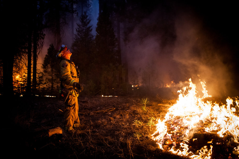 Sacramento Metropolitan firefighter John Graf monitors the Rim Fire line near Camp Mather, California, August 26, 2013. The Rim Fire burned 257,314 acres and is the third largest wildfire in California history.