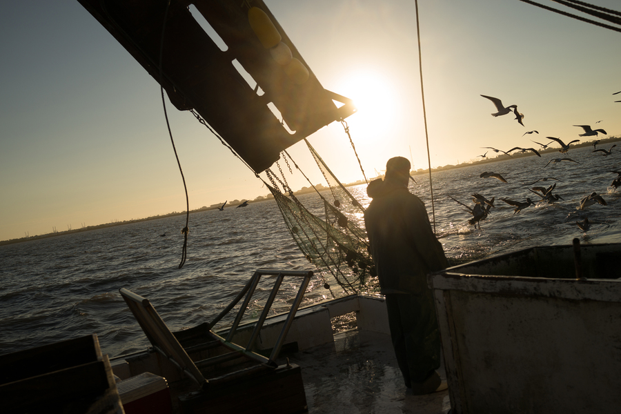 "Deckhand Arthur Miller watches the sunrise off the coast of Galveston, Texas while shrimping for bait on the ""Sherry Diane."" (Dominic Bracco II / Prime for WWF Magazine)"