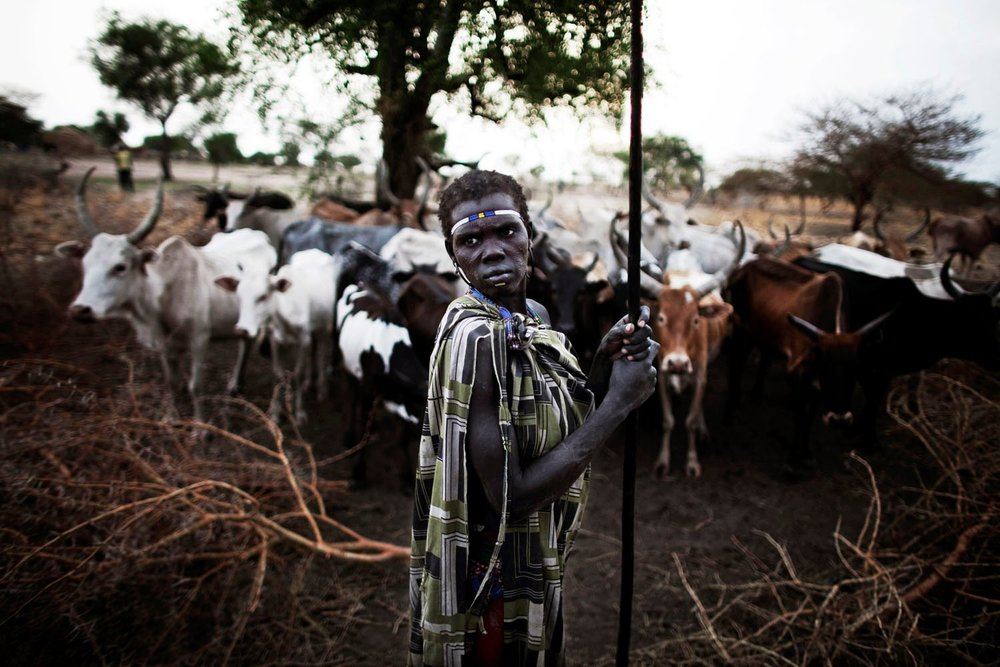 A woman from the highly marginalized and deeply distrusted Murle stands with her cattle at dawn in Pibor.