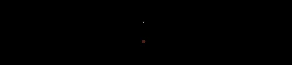 voyager logo_grayed.png
