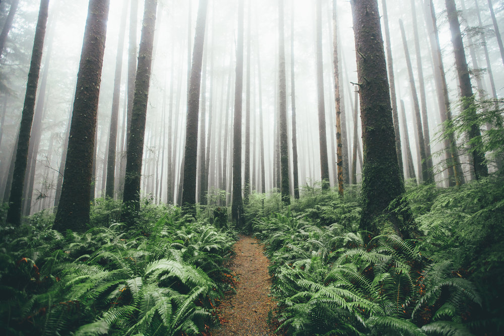 Dylan Furst - Outdoor Photography