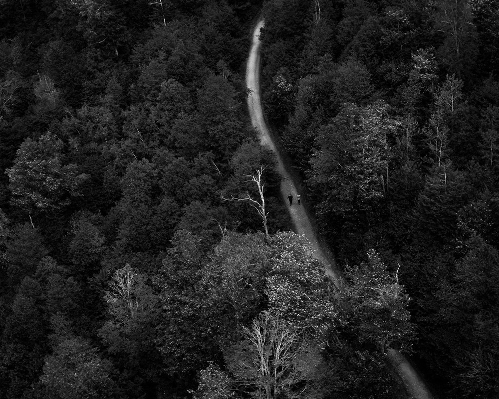 A black and white photograph by fine artist Cody Schultz, this scene shows two individuals walking along a dirt pathway that looks silver from the light. The rest of the scene - a mixture of different trees as seen from above - is high-contrast, with leaves and trees standing out from each other simply due to the toning.