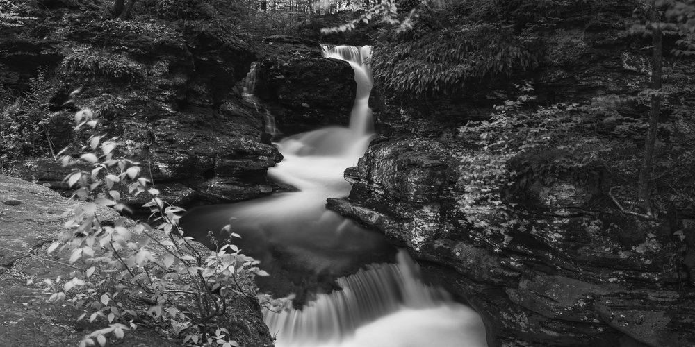 A black and white photograph by fine artist Cody Schultz, this panoramic image shows what is said to be the most beautiful/popular waterfall in Ricketts Glen, Pennsylvania. In the foreground stands a plant, just barely recognizable due to being blurred by the wind. Behind it is the waterfall, framed by the rock walls to either side. The entire image has an almost metallic shine to it.