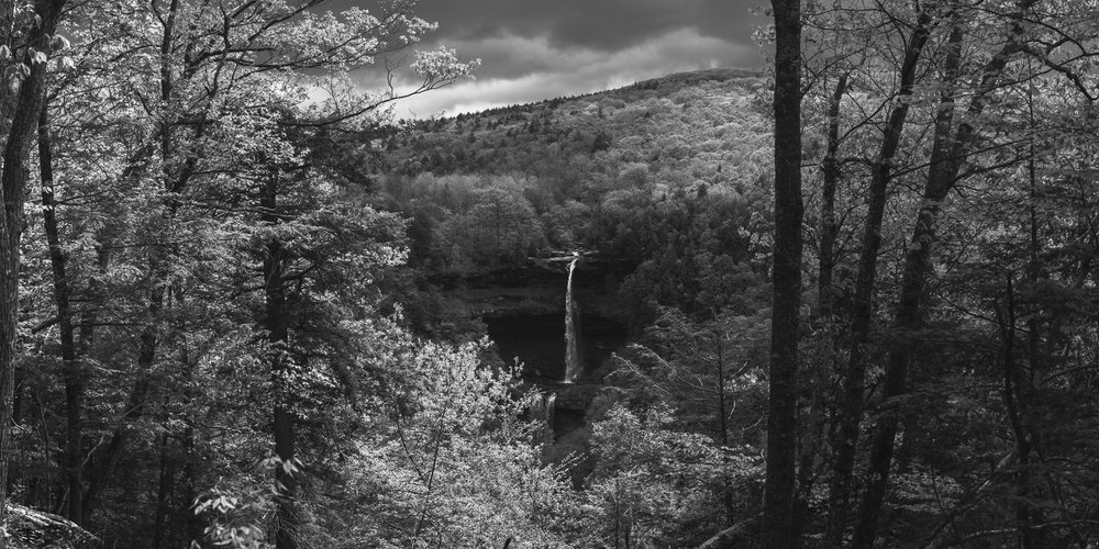 A black and white photograph by fine artist Cody Schultz. Forest Views is a panoramic image capturing Kaaterskill Falls in New York - near the Catskill Mountains - as dark storm clouds roll over the scene, threatening rain. The waterfall itself sits in the lower-middle of the frame with bright, lively trees on either side, helping to frame the scene. This highly detailed scene is made up of a number of individual photographs, making for a very large file and a beautiful print.