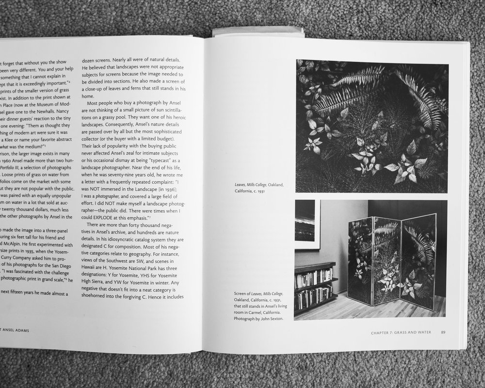 "A black and white photograph of a page from book of the work of Ansel Adams, published by Little Brown Co. that highlights a photograph Ansel had made of Leaves on the ground and turned into a three-panel privacy screen, which inspired fine artist Cody Schultz to create his piece, ""Upon The Forest Floor."""