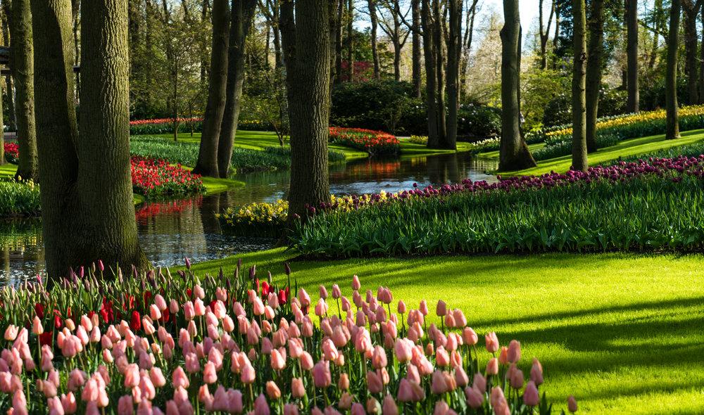 Keukenhofen, Holland