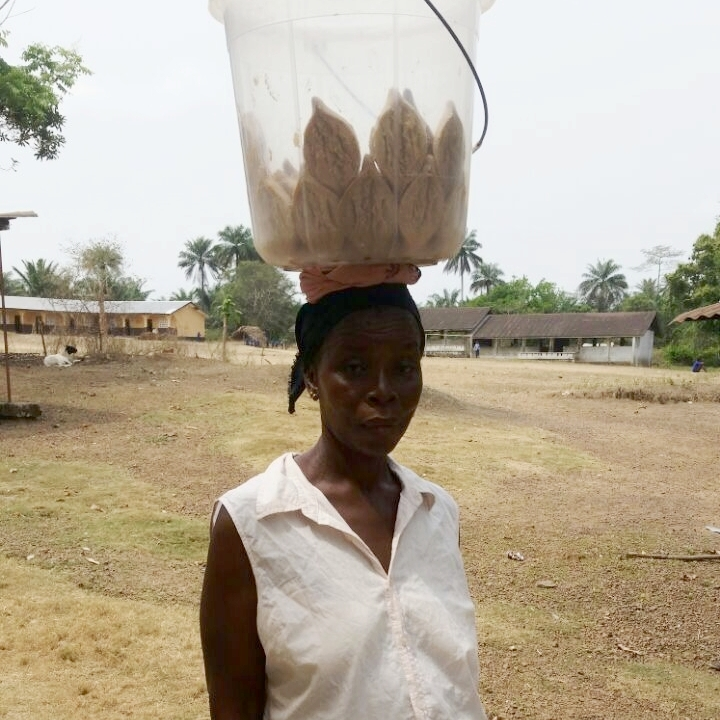 Hassanatu Fillie, female micro-financing recipient on her way to the market.