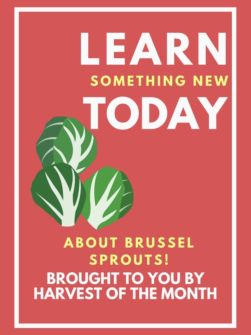 BrusselSproutsHOM (3)_Page_1.jpg