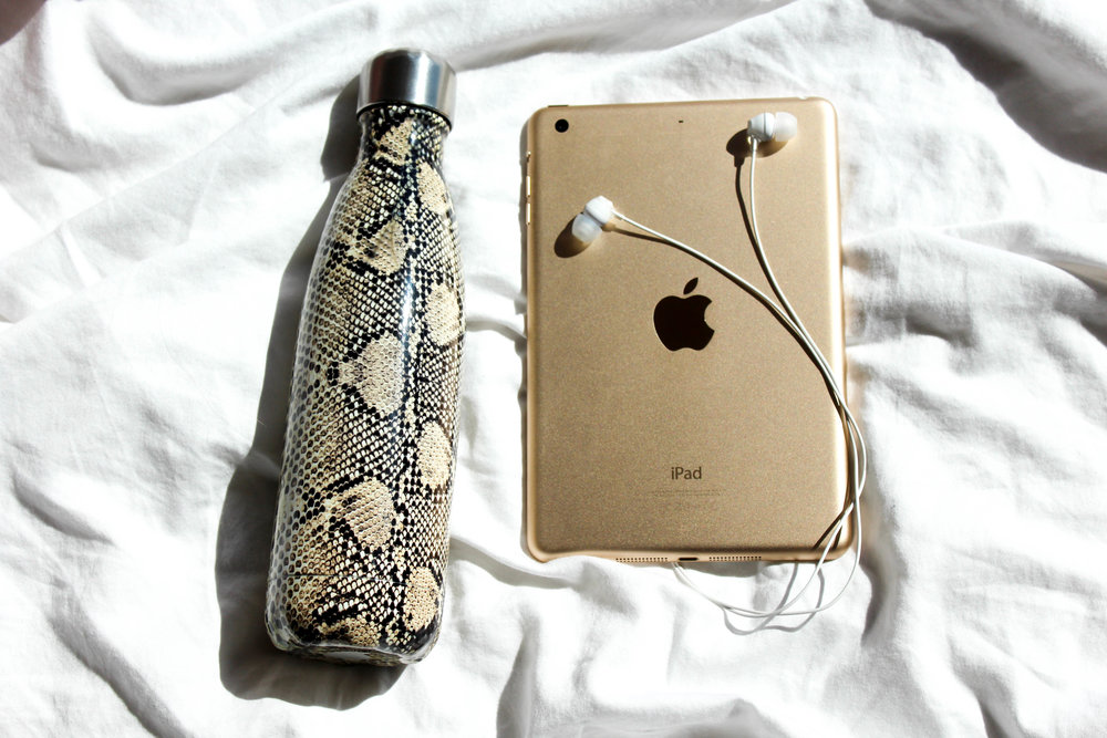 Swell Bottle in Sand Python, iPad Mini 3 in Gold