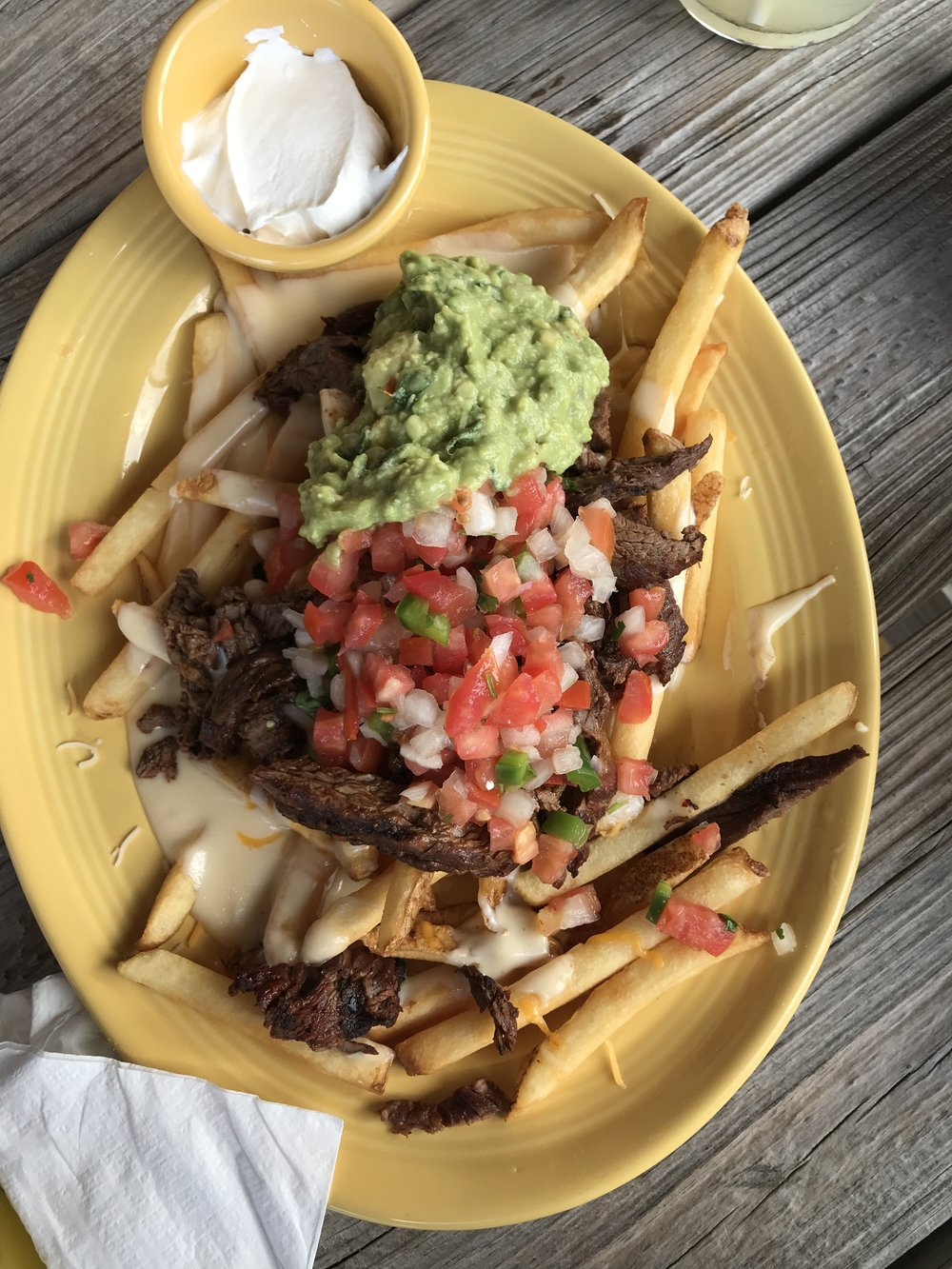 South Bound Carne Asada Fries
