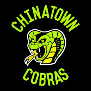 EVBL-2017-Cobras-Web.png