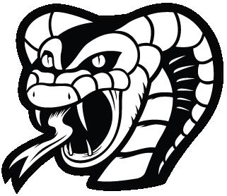 17 - vs chinatown cobras sat - july 14 - 6pm sunrise park