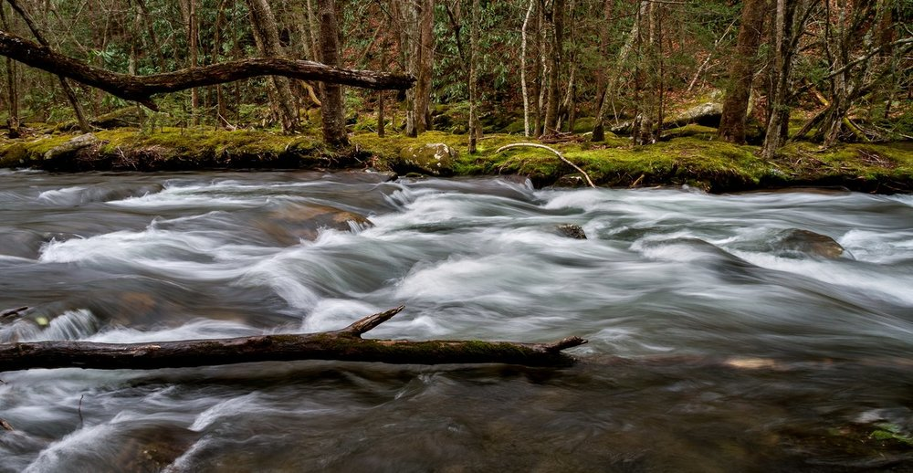 One of the many streams running throughout the Great Smoky Mountains. I actually had lunch along this particular stream a couple of weeks ago. Afterwards, I then set up my tripod with my Canon 7D and EF-S 18-200mm lens. My ISO was 100 with an aperture of f/11. My shutter was 1/4. I used Lightroom to process the photo. I often convert scenes like this to black and white, but the verdant banks just popped so much that I had to leave it in its natural beauty.