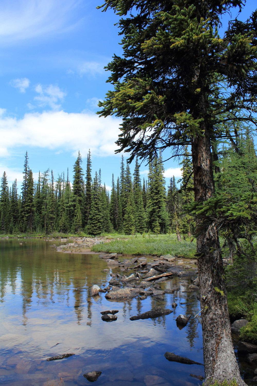 Twin-Lakes-Arnica-Lake-Lunch-Spot1.jpg