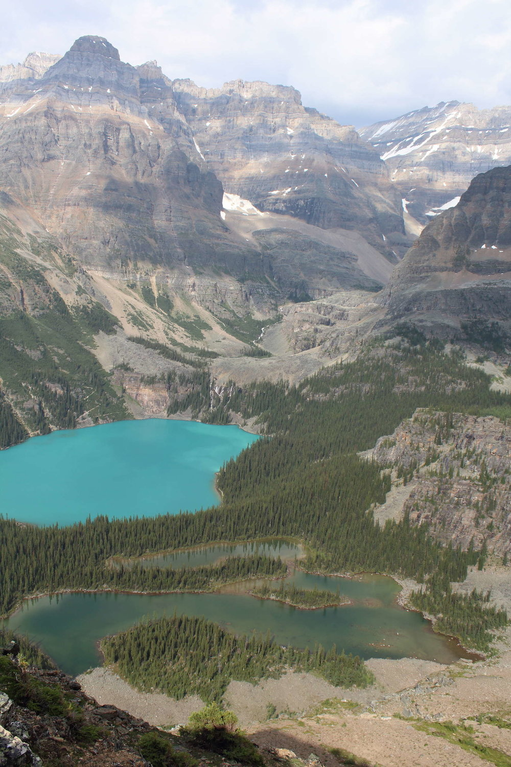 Lake O'Hara from the All Souls Prospect
