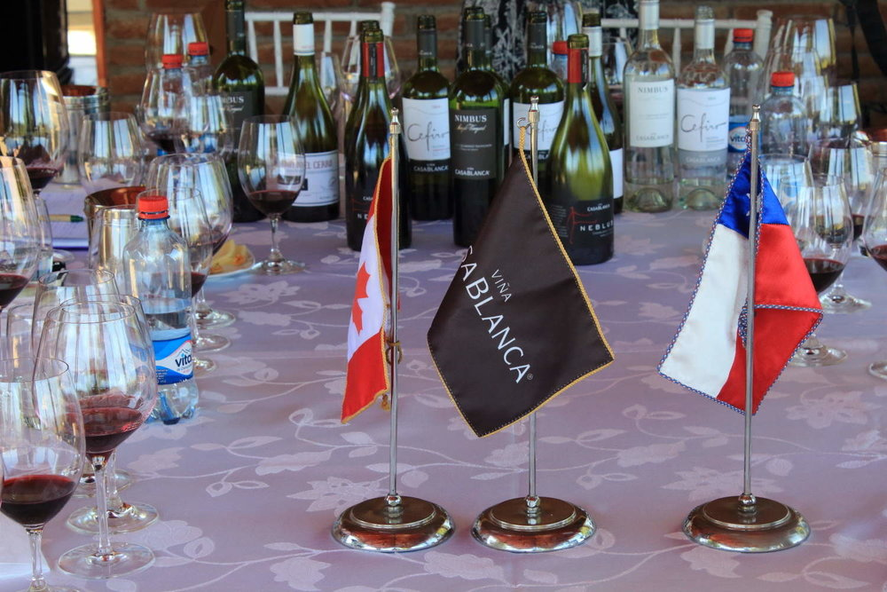 Wine tasting with Casablanca Vineyard