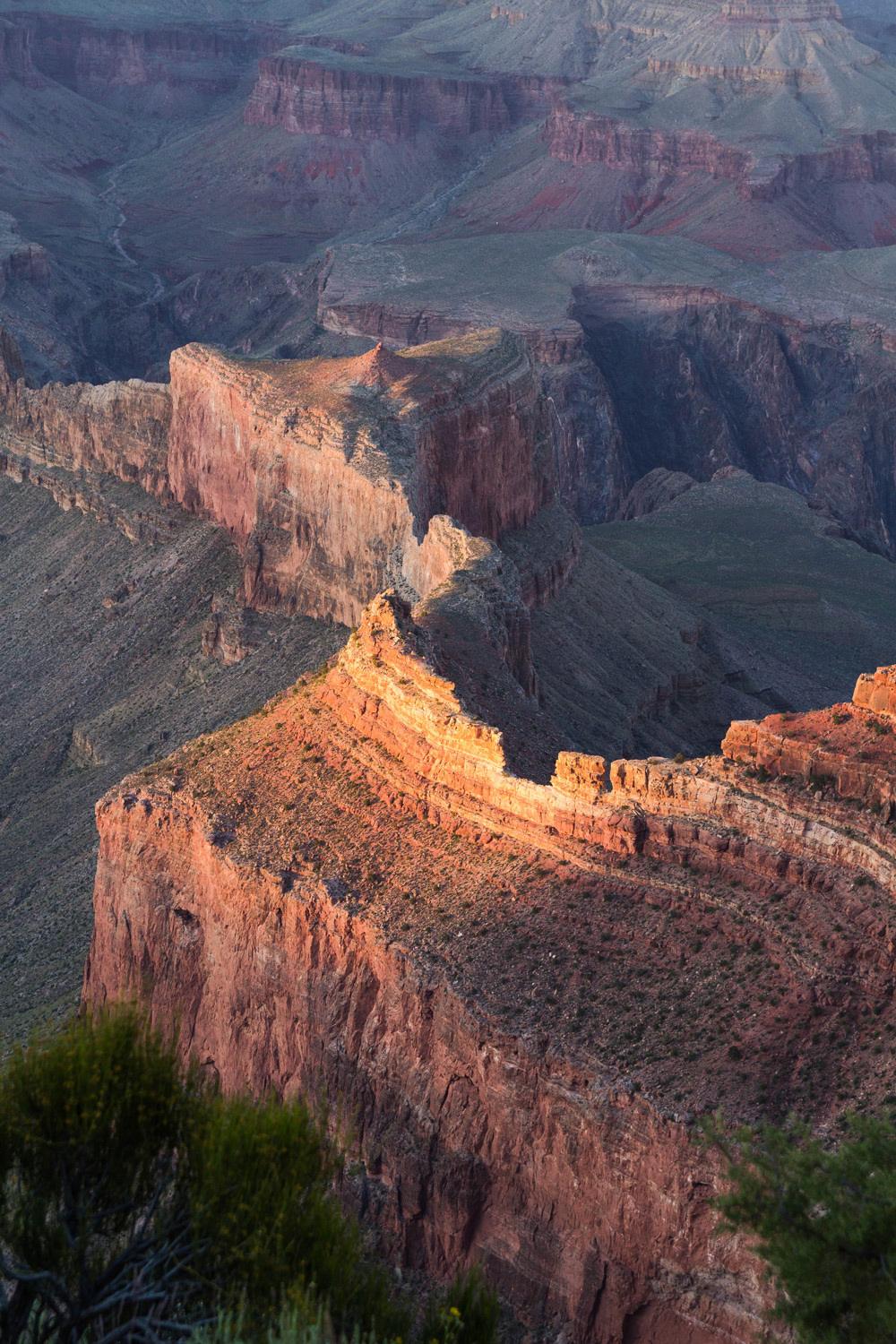 Golden Light at Sunset, South Rim