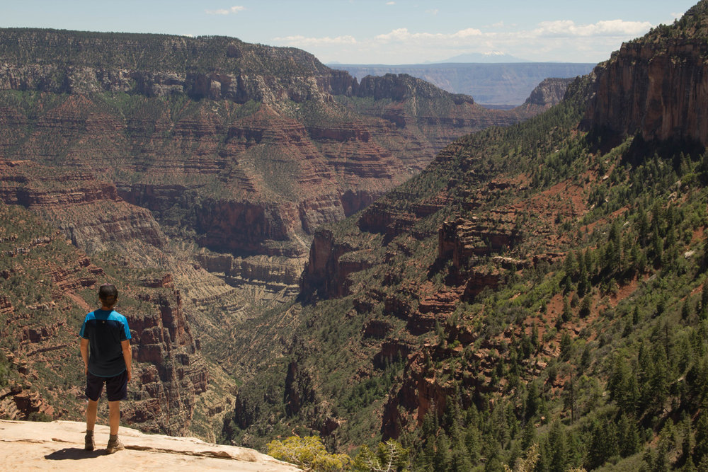 Lookout Along the North Kaibab Trail, North Rim