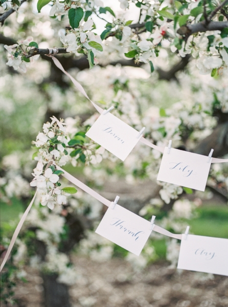 A beautiful way to display place cards