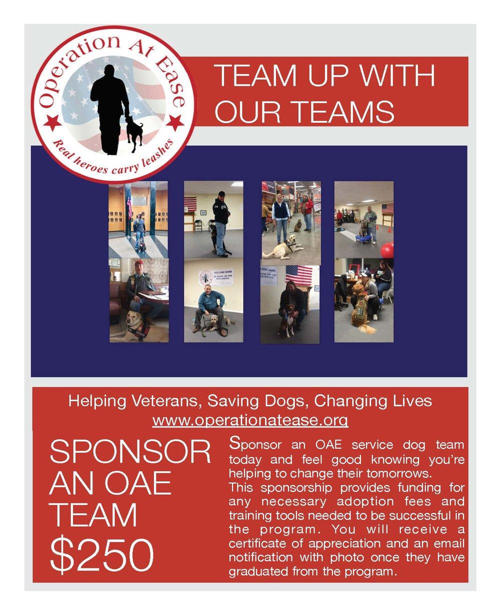 Team Sponsor Flyer.jpg