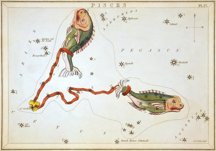 We are currently moving through a powerful cycle with New Moon in Pisces conjunct Chiron, aka the wounded healer. During this undeniably active time, we are being asked to look closely at our wounds, understand that we are not defined by them, and do the work that needs to be done so that these hurts no longer pose as an impediment to our process. Many things are shifting on a global level and much of this is more than what readily meets the eye. This new moon sets us up with a request to turn inward and assess our history, collective and personal, and also invites us to awaken our compassion and re-invent the ways in which we show ourselves respect, love, and honor. A renewal in creativity may also be awakened right now. Working through insecurities and feelings of inadequacy, we are able to see how vital we are to this process of life and transformation. We remember that our existence is essential to this great drama. This cycle, and really the next few years, will have us surveying how we play our part in it all and whether we are living to our full potential. The fires of Aries awaken soon, and a new cycle begins which will carry us through the next few seasons in which much light will be shed upon both the shadow and the whole. It is really a time to purge and heal. Some sacrifices may need to be made, and only you can determine what exactly that will look like in your life. (FYI: a good amount of wands came through this time, again. Spiritual reserves are high, and the fire of purification is still guiding us in our ways. This speaks directly to some of the sacrifices that need to be made.)