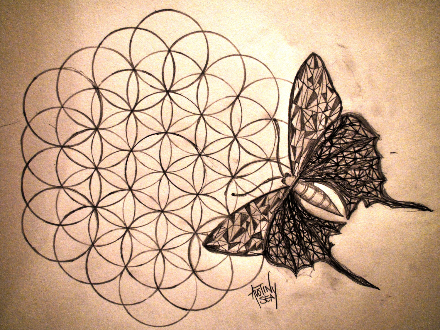 The Flower Of Life Where Masonry And Spirituality Meet Southern