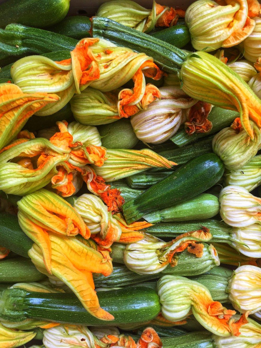 zucchini blossoms ~