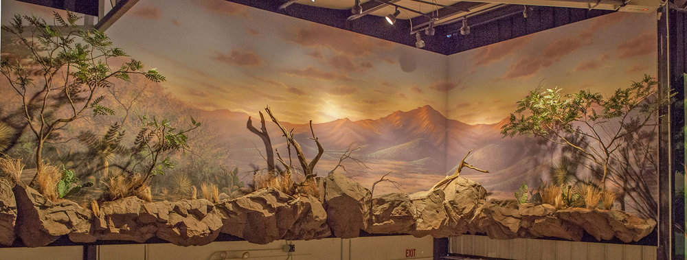 Mural Diorama on location for Private Trophy Room