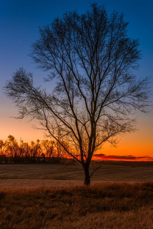 Nebraska Morning.