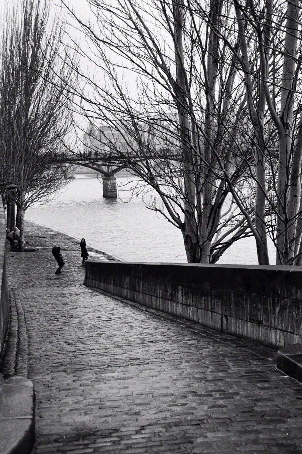 The Seine- Paris, France